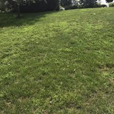 photo of trugreen lawn care pittsburgh pa united states this is after