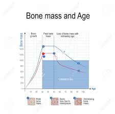Bone Mass Chart Bone Mass For Male And Female Age And Osteoporosis Chart Healthy