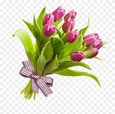 flower bouquet tulip rose cut flowers