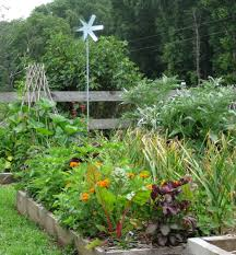 a gift of good land bluebird hill farm announces essay contest  garlic herbs flowers copy