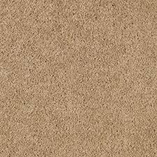 brown carpet floor. Carpet Sample - Ambrosina I Color Golden Brown Texture 8 Floor