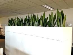 Image Ideas Indoor Flower Box Pots Planters On Planter Boxes Com Alive Picture Size Posted Wooden Diy Indoor Planter Box Djdelacorcom Call Center Cubicle Top Indoor Planter Boxes Box Window Ideas