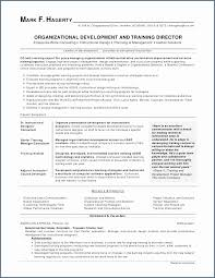 Resume Work Experience Beauteous Work Experience Resume Examples Inspirational Work Experience Resume
