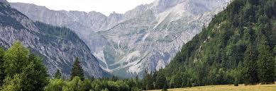 Alpine Park Our Summer Domicile