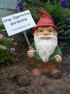 a gnome protests in an undisclosed garden