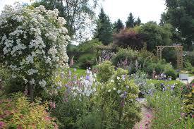 Des Plantes Floraison Longue Pour Un Jardin Fleuri Toute L Ann E
