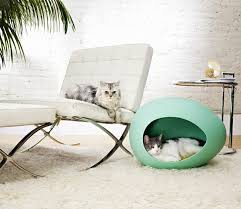 pet friendly furniture. haustiere pet friendly cat furniture and trees