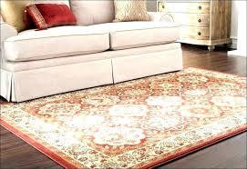 indoor outdoor rug runner full size of home rugs kids living safavieh courtyard indoor outdoor rug runner