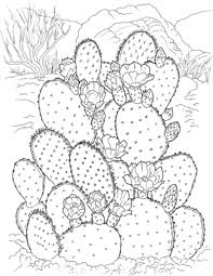 Small Picture Printable Coloring Pages for Adults 15 Free Designs coloring