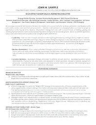 Sample Resume Sales And Marketing Inspiration Sample Marketing Consultant Resume Baxrayder