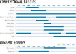 Blueberry Ripening Chart Berries Faqs Driscolls