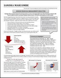 graphic resume profile examples distinctive documents graphic resume value profile example 8