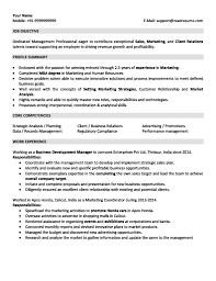 Professional Experience Resume Example Sales And Marketing Resume Sample For 24 Years Experience 24
