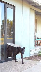 dog doors for sliding glass doors. Dog Doors For Sliding Glass D