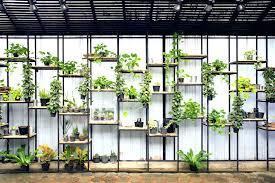 vertical herb garden on shelves green wall indoor diy vertical herb garden
