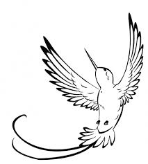 simple hummingbird drawing. Interesting Drawing Simple Hummingbird Drawing At Getdrawings  Free  For Personal Intended L