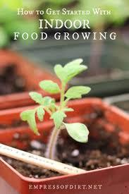 get started with indoor vegetable gardening
