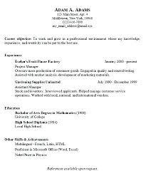 Basic Resumes Templates Simple Sample Resume Format Simple Sample Resume Examples Of Resumes