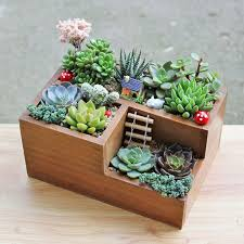 office planter. multifunctional wooden desktop office supply caddy and succulent planter