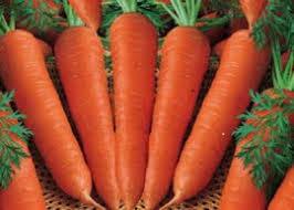 هویج بخورید زیبا شوید!