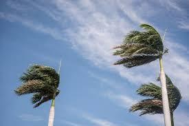 Resultado de imagen para Imágenes de viento