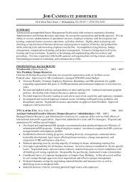 Resume Form Template And Sample Military Resume Best Template