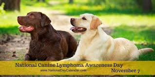 Canine Lymphoma Rome Fontanacountryinn Com