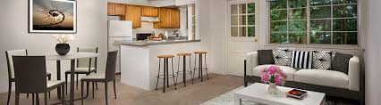 3 Bedroom Apartments For Rent With Utilities Included Design Interesting Decorating