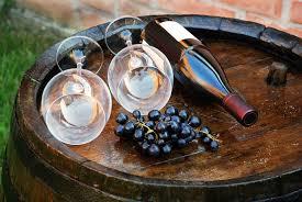 Как рождается вино отчет с винодельческой фермы в Бордо