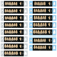 Products Enigma Teeth Specialty Tooth Supply Ltd