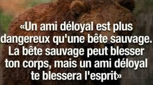Beau Proverbe Belle Citation Sur La Vie Amitié Fidélité Loyauté