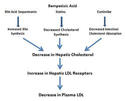 cholesterol lowering s endotext