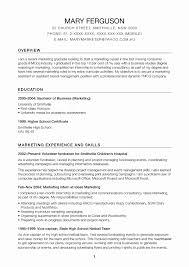 International Resume Sample Beautiful International Chief Marketing