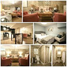 basement apartment design ideas. Basement Apartment Design Ideas Apt Decorating Walkout Small . N