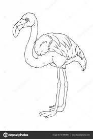 Gelukkig Lachend Cartoon Staande Flamingo Kleurplaat Pagina