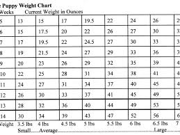 Cane Corso Weight Chart Pounds 21 Competent Breed Weight Chart