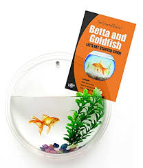 Betta Art Decorative Fish Bowl Wall Mounted Fish Bowl Bubble for Goldfish Beta or Hanging 35