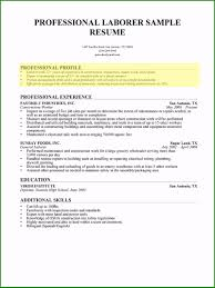 Help Writing Professional Resume 35 Hints You Need To Consider