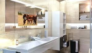 Bathroom Mirror Tv Bathroom Mirror Tv Uk – veroin