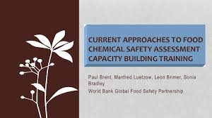 Recent advances in food chemical risk assessment training and capacit…