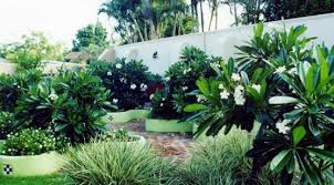 Small Picture Karina Mehrings Inspiration Board Front garden bed ideas