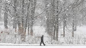 Winter in Michigan likely to be wetter, but colder? That's a 'toss up'