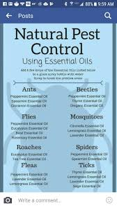 Essential Oils Pest Control Chart Pin On Essential Oils