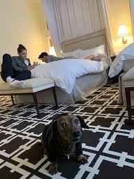 el prado hotel s reviews palo