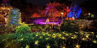 stunning lighting. Miracle On Roma Street \u2013 The Enchanted Garden Returns With A Stunning Light Lighting W