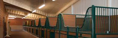 lighting design and installation for equine facility