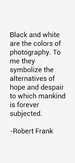 Photographer Quotes 25 Inspiration Robert Frank Photographer Quote Quotes