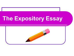 types of essays a basic guide to master them all type of essay