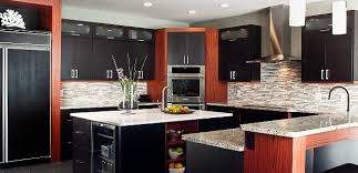 Modern Kitchen Cabinets Design Ideas Classy Modern Kitchens And Budget Kitchen Design