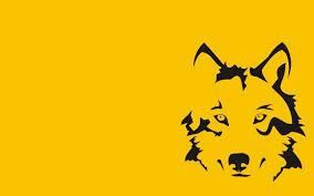 The Black Wolf Hd Desktop Wallpaper Background Download